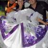 Fiesta Nacional del 20 de julio 2010 (melisa)